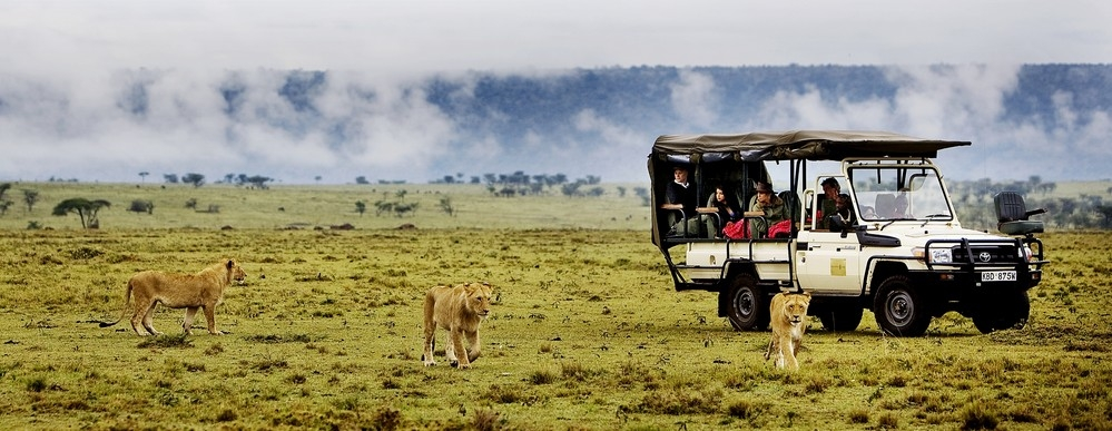 Safaris Kenya